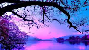 pink purple and blue wallpapers
