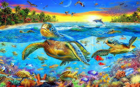 sea ocean sea turtles swimming cs