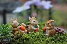 com muamax miniature bunnies 3