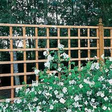Forest 6 X 4 Heavy Duty Square Garden Trellis Fence Panel 1 83m X 1 22m Shedstore