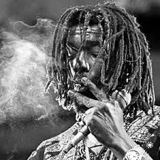 Peter Tosh Photo Gallery | Fine-Art Prints for Sale | Icon Gallery
