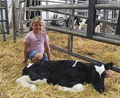 Kids Corner: the Johnsons - Dairy Star - Sauk Centre, MN