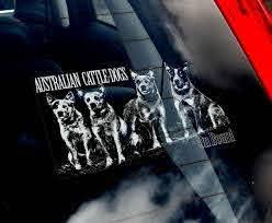 Cattle Dogs Car Window Sticker Acd Cattledog Cattledogs Blue Heeler Blue Heeler Heeler Cattle Dog
