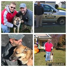 Donation Of A Dogwatch Hidden Fence To The Silent Hero Of Ohio State University Terrorist Attack But You Can Help Too Dogwatch Of Columbus Columbus Oh