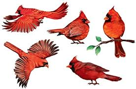 Amazon Com Wirester Decal Vinyl Wall Stickers Decoration For Home Office Living Room Wall Bathroom Red Cardinal Birds Arts Crafts Sewing