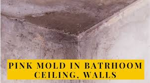 pink mold in bathroom ceiling