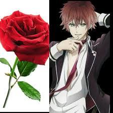 The Roses In Anime امبراطورية الأنمي Amino