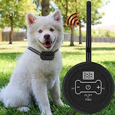 Amazon Com Dog Wireless Fence Pet Electric Containment System Safe Effective Beep Shock Dog Fence Waterproof Rechargeable Training Collars Receiver For Large Medium Small Dogs For1 2 3dogs For1dog Sxdd Pet