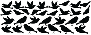 Amazon Com Innovative Stencils Bird Wall Decal Stickers Peel And Stick Decor Flying And Sitting Removable And Reusable Vinyl Wall Art Decor Addon For Large Tree Decals 1387 Large Matte Black Home