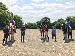 Bridle Paths and Brain Injury Group Equine Therapy Program - Brain Injury  Services