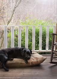 small meres diy dog beds treats
