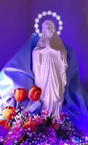 Madonna Miracolosa: COSA SIGNIFICA SOGNARE LA MADONNA?