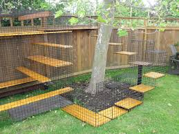Safety Outdoors Cat Enclosures Cages Purrfect Love Outdoor Cat Enclosure Dog Backyard Cat Cages