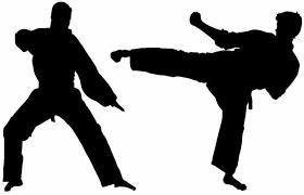 Amazon Com Karate Martial Arts Tae Kwon Do Jiu Jitsu Kids Bedroom Vinyl Wall Decal Home Kitchen