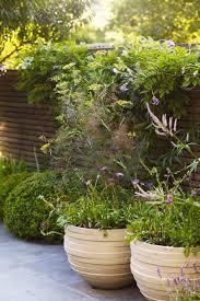 gardens news and features house garden