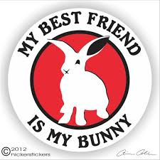Rabbit Decals Stickers A Nickerstickers
