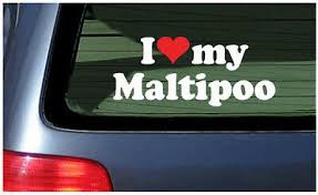 I Love My Maltipoo Sticker Vinyl Decal Car Window Dog Puppy Heart Designer Breed Ebay