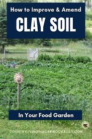 how to improve clay soil amending