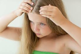 how to treat get rid of head lice in