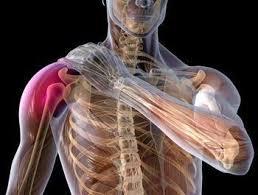 Lesões musculoesqueléticas: diagnóstico e prevenção – ClinicaExVitam
