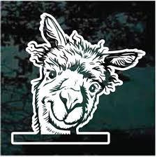 Alpaca Peeking In The Window Decals Stickers Decal Junky
