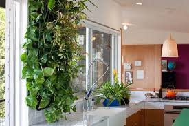 living walls how they can improve your