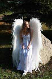 family photoshoot angel wings
