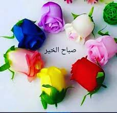 صباح الورد والفل والياسمين نتمني لكم جميعا يوم مشرق ومليئ