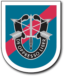 20th Special Forces Group Flash Decal