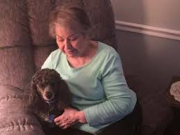 pets have great meaning for the elderly