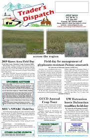 Trader S Dispatch July 2019 By The Trader S Dispatch Issuu