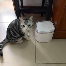 Xiaomi Mèo Con Chó Con Thú Cưng Điện Thông Minh Nước 4 Lớp Lọc Chó Mèo Máy  Uống Ăn Nước Trong Đồ Cho Thú Cưng|Điều khiển từ xa thông minh
