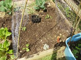 How To Build A Low Cost Vegetable Garden Trellis 5 Steps With Pictures Instructables