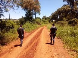 Resultado de imagen para policia monte misionero