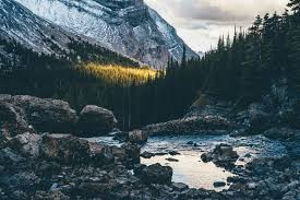 mather nature landscape