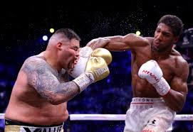Anthony Joshua fought through panicky moments to out-box Andy Ruiz Jr. -  Business Insider