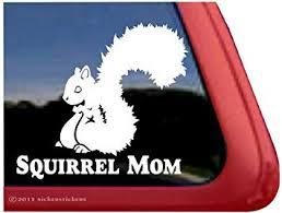 Amazon Com Squirrel Mom Vinyl Window Decal Sticker Automotive