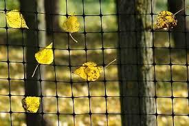 Black Polypropylene Deer Fence 7 X 100 Ft Garden Crop Plastic Barrier Fencing 23 70 Picclick