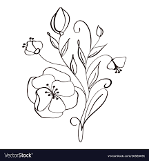 flowers drawing and sketch fl with line