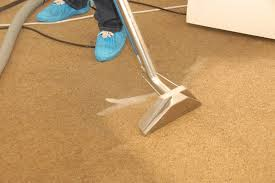 rug cleaning service jean glavany