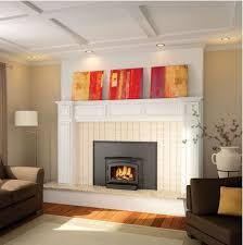 wood burning fireplace inserts 1 wood