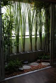 balcony garden ideas garden ideas and