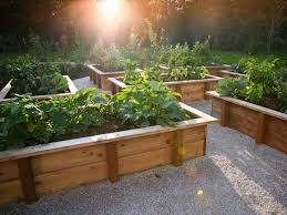 20 raised bed garden designs and