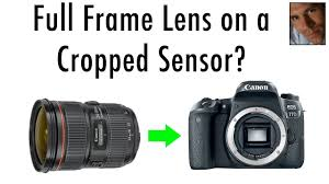 lens sharpness on crop sensor bos