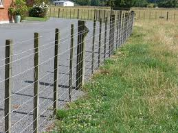Woolshed 1 New Zealand Farming Fencing Glossary Of Terms
