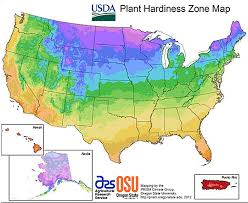 what planting zone do i live in learn