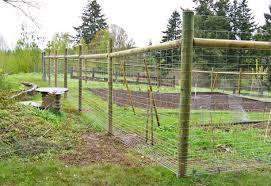 Deer Fencing Hillcrest Fencing
