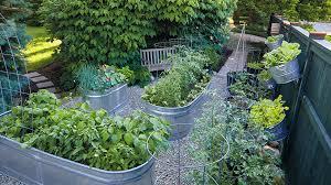 How To Grow Vegetables In A Galvanized Raised Garden Bed Garden Gate
