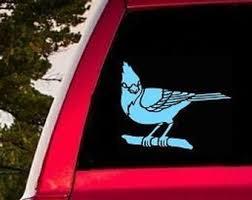 Blue Jay Sticker Etsy