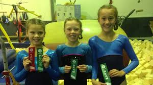 ACT success for local gymnasts | The Young Witness | Young, NSW